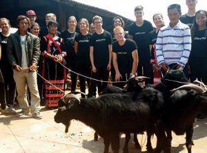 Fair Trade Buys Goats: A gift that keeps on giving